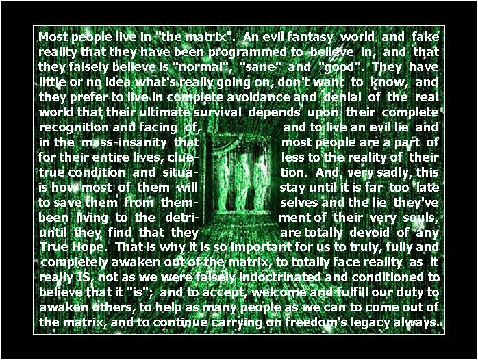 Click here to go to the Wikipedia website to learn about the movie, The Matrix, and its message!
